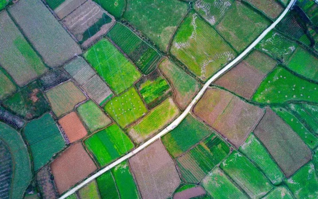 【农业模式杂谈】 2019年八种农业新模式,5分钟了解!