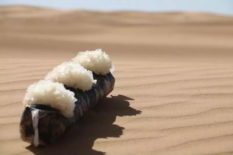 【每周优品】世界上的第一朵沙漠银耳,了解下!
