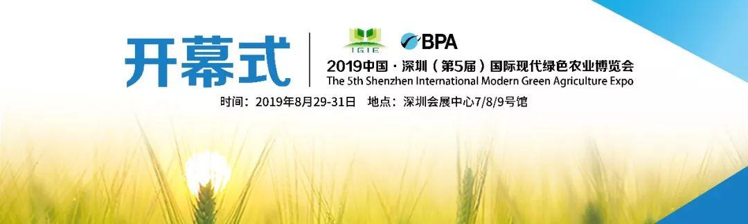 2019深圳绿博会各大奖项尘埃落定,带您看下各大奖项花落谁家!