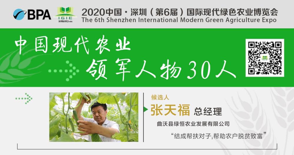 【现代农业领军人物30人】张天福——以工促农产业兴,脱贫致富生态优