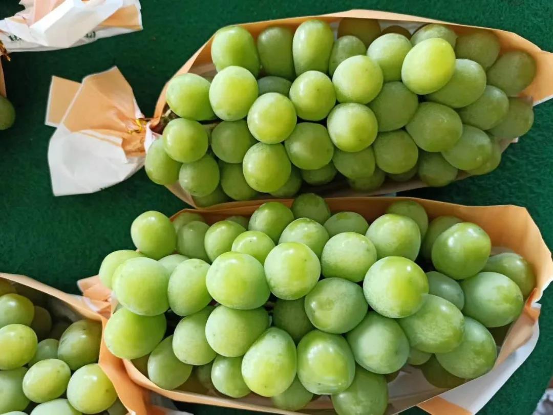 """【每周优品】""""一果红""""——一个让你更舒心的果蔬生鲜购销体验平台!"""