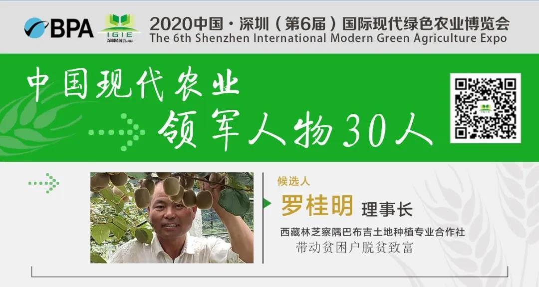 【现代农业领军人物30人】罗桂明——带动一方发展、富裕一方群众