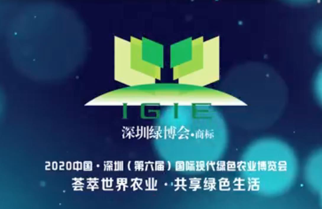 【震撼首播】2020第六届深圳绿博会现场纪实片震撼首播!