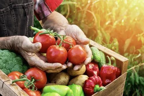 【农业模式杂谈】生鲜行业的10大痛点